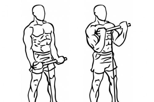 Curl de bíceps en polea